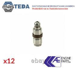 12x Ae Outlet Side Hydrostössel Ventilstössel Fol141 G Für Audi A4, A6, Tt, A8